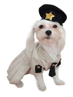 Sheriff Dog