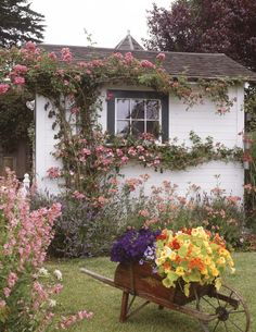 cottage climbing roses make such a huge impact, along with that container planting. Not a large cottage garden--but loaded with charm! A cottage garden can be small but very charming, like this one with climbing flowers and a wheelbarrow planter. Style Cottage, Cute Cottage, Cottage Chic, Cottage Living, Irish Cottage, French Cottage, Cottage Garden Design, Small Garden Design, Cottage Front Garden