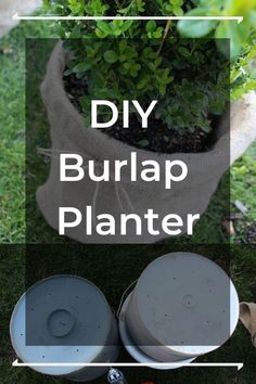 Give your backyard a whole new look with these upcycled planters. Front Yard Planters, Tall Planters, Herb Planters, Paint Stirrers, Christmas Ornament Wreath, Diy Planter Box, Succulents In Containers, Garden Projects, Diy Projects