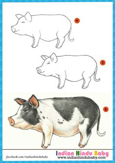 Do you know Pig can run a full mile in just 7.5 minutes? Teach your kid to draw and paint Pot-bellied Pig with simple drawing tips