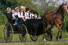 Interesting insights on the Amish – History 101
