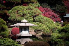 "22 Likes, 4 Comments - Andrea Guffi (@andrea.guffi) on Instagram: ""a quiete place…  #zengarden #silence #zen #kamakura #kamakurajapan #tokyo #japan  #japan2017…"""