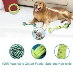 Grentay Dog Toy Set, Squeak Dog Toys, Interactive Dog Rope Toys, Rope Dog Toy Durable Chew Material Puppy Toys Set for Puppy& Medium Dog Pack) Doggies, Pet Dogs, Pets, Dog Chew Toys, Dog Toys, Rv Toilet Paper, Buying An Rv, Medium Dogs, Donuts