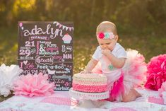 Outdoor Cake Smash Photography Session for Girl by Tampa Child Photographer - Pink First Birthday outfit, pink ombre ruffle cake and girl's first birthday chalkboard sign