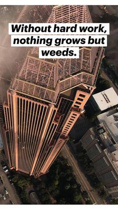Antique Quotes, Weed, Work Hard, Working Hard, Marijuana Plants, Hard Work