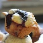 Blueberry Muffins » The Sugar Hit