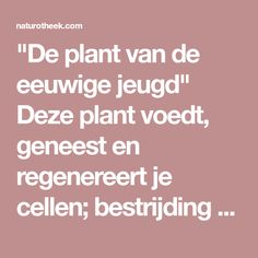 """""""De plant van de eeuwige jeugd"""" Deze plant voedt, geneest en regenereert je cellen; bestrijding van bloedarmoede, diabetes, jicht, artritis, artrose, reuma, bescherm uw lever en meer - Naturotheek"""