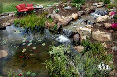 Playboy mansion 961 725 studio project 3 for Virtual koi fish pond