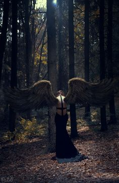 """I am a winged creature who is too rarely allowed to use its wings. Ecstasies do not occur often enough"" -Anais Nin"