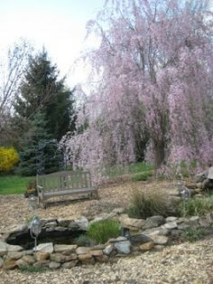 Meadow Muffin Gardens: Earth Day Idea To Reuse and Reinvent