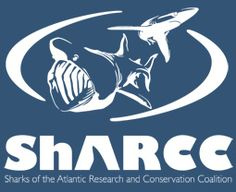WWF-Canada is committed to working with partners to address the main priorities for shark conservation in Canada