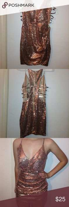 Rose gold sequin dress Rose gold sequin dress with light padding and silver cutouts on the back Dresses
