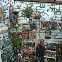 Decoration Decoration - Garden Shed Garden Junk, Garden Deco, Garden Shop, Garden Pots, Cottage Garden Design, Recycled Garden, Cactus Y Suculentas, Garden Trellis, Shabby Vintage
