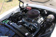 Pontiac Firebird, found at Cars and Coffee Austin TX USA March 2011.