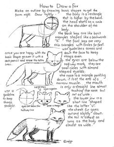 How to Draw Worksheets for The Young Artist