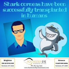 Did You Know?!?! And Now You Know!! #FunFacts #RochesterEyeAssociates #RochesterEyewear