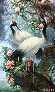 craft drawing Picture - More Detailed Picture about Diamond Embroidery Diamond Mosaic Lovers Birds Pictures Cross Stitch Knitting Needles Wedding Decoration Hobbies And Crafts Picture in Diamond Painting Cross Stitch from REDIY LADIY Store Beautiful Gif, Beautiful Birds, Animals Beautiful, Exotic Birds, Colorful Birds, Peacock Art, 5d Diamond Painting, Bird Pictures, Lake Pictures