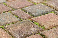 Die Besten 25 Terrassenplatten Reinigen Ideen Auf Pinterest