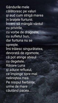 Alba, True Words, Just Me, Dan, Poems, Poetry, Verses, Shut Up Quotes, Quote