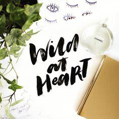 Wild at heart #graphicdesign #typography #script #handlettering #handtype…