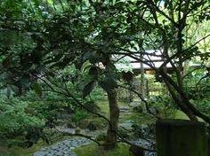 Image result for portland japanese garden The tea garden