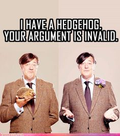 Stephen Fry and a hedgehog! Hedgehog Pet, Cute Hedgehog, Loki, Funny Celebrity Pics, Cute Love, Make Me Smile, I Laughed, Cute Animals, Humor