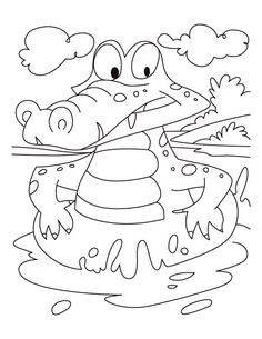 florida alligator colouring pagesalligator coloring pages prints and colors
