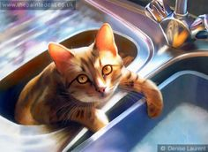 Doing The Washing Up Bengal Cat Painting
