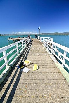 Wellington Harbour behind, Seatoun, Wellington, Wellington City District, Wellington Region, New Zealand (NZ) Stock Photo