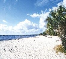 Port Charlotte Beach Park Is A Perfect Choice For Families And Athletes Alike