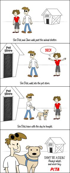 """Show your friends how not to be a """"Dick"""" by adopting dogs and other animals, not buying from a pet store."""