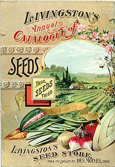 BACK COVER    Company Name:  Livingston's Seed Store    Catalog Title:  11th Annual Seed Catalogue (1898?)