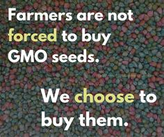Farmers are not forced to buy GMO