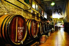 Barcelona's bodegas are a combo of cellars and shops, where you can enjoy wine, vermouth, and savoury snacks in traditional and modern surroundings, or get your supply from barrels to take away. Bares Y Pubs, Barcelona, Savory Snacks, Traditional, Canning, Modern, Barrels, Shops, Drink