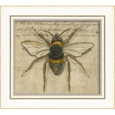 Bumble Bee Drawings | Blueprint Artwork Bumble Bee Framed Art
