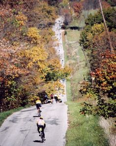 hilly 100