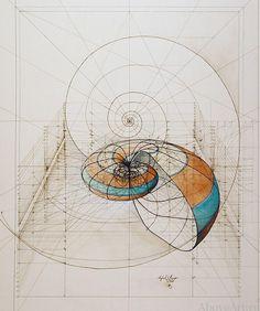 Above Art | Rafael Araujo «Золотое сечение»