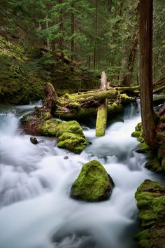 photo by Nicole Young, using Lee Big Stopper filter (more details in post)