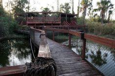 Abandoned zoo, Florida.