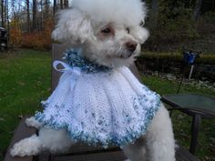 Cutest doggie Cape.  Snow falling !!!  Check it out at Caninecoutureltd@etsy.com