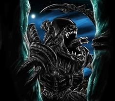 1056 Best Alien Vs Predator Images Alien Vs Predator Aliens