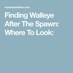 Finding Walleye After The Spawn: Where To Look: