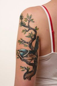 fairy wren tattoo