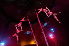 Netherlands National Circus Ticket - 3 Locations! deal in Tourist Attractions Get a front circle ticket to see the fabulous Netherlands National Circus.  Enjoy a dynamic, thrilling mix of both traditional and modern circus acts.  Packed with plenty of laughter, excitement and suspense.  All taking place inside their climate controlled, theatre-style big top.  An enchanting treat for all ages! ...
