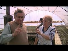 Ciorbă de perișoare ca la Gottlob #SareaInBucate @TVR Timişoara - YouTube Romanian Food, Food Videos, Couple Photos, Couples, Youtube, Couple Shots, Couple Photography, Couple, Youtubers