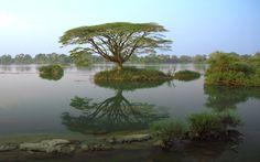 Google Afbeeldingen resultaat voor http://www.indochinatravelservice.com/Travel/Laos/SiPhanDon/Si_Phan_Don.jpg