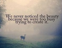 #quote #beauty