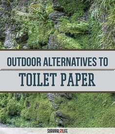 Wilderness Survival Guide: Outdoor Toilet Paper Alternatives by Survival Life at http://survivallife.com/2015/07/31/wilderness-survival-guide-toilet-paper #survivalgear