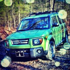 One of our Honda Elements...Off-roading!