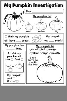 Free Printable Pumpkin Investigation Worksheet (use as group activity at circle, preschool is no place for worksheets) 1st Grade Science, Kindergarten Science, Preschool Lessons, Elementary Science, Science Lessons, Kindergarten Worksheets, Teaching Science, Elementary Schools, Teaching Ideas
